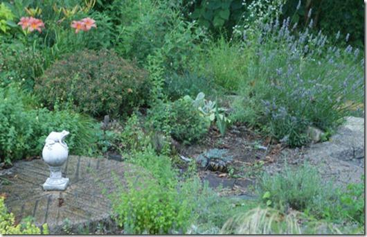 Turtle-in-garden