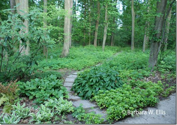 Woods-Entrance