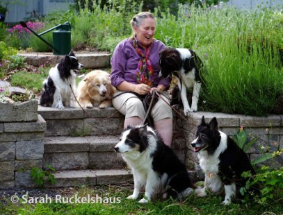 Barbara-and-Dogs