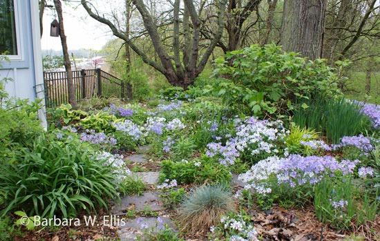 april in the garden eastern shore gardener rh easternshoregardener com kew garden in april garden route in april